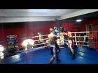 gochoshvili giorgi vs kapanadze rezo profesional boxing 2013 year
